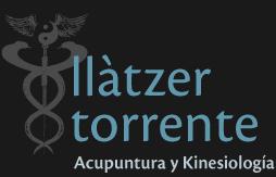 Llatzer Torrente