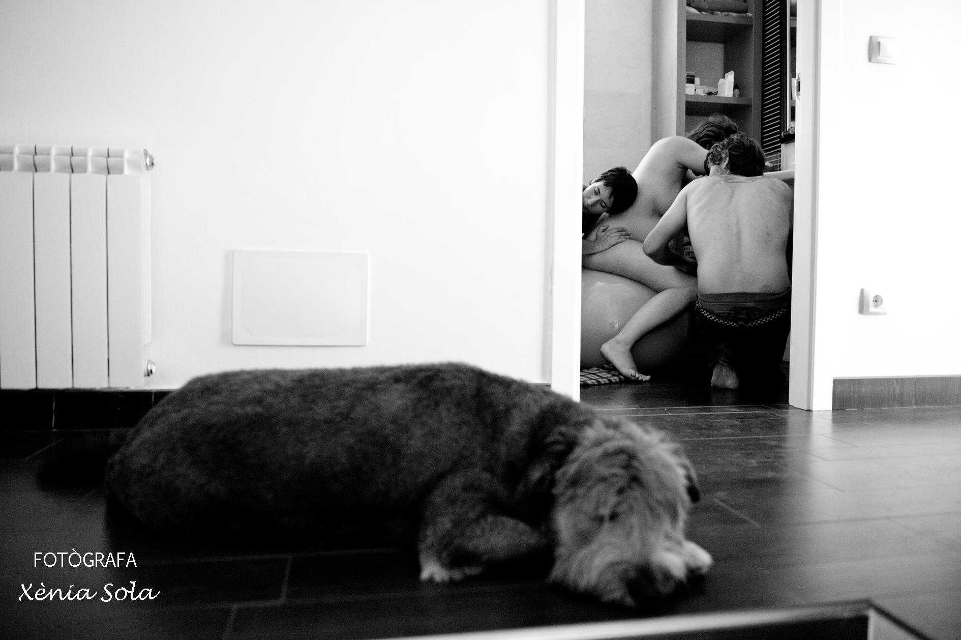 Teia-i-Toni-Llibert-022-nom-fotògrafa